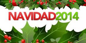 Navidad 2014 Celebracion