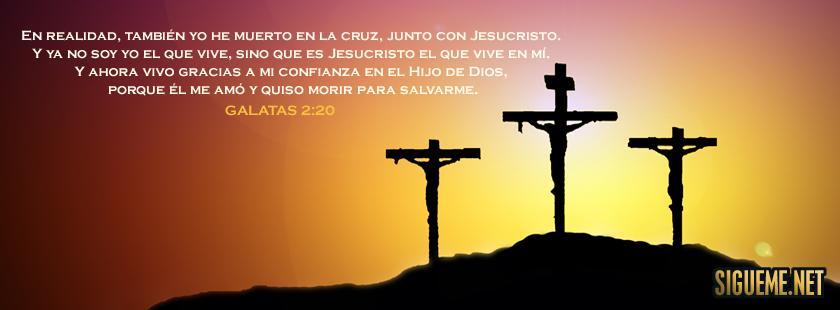 Imagenes De Semana Santa Para Reflexionar Con Frases Lindas - Mundo  Imagenes Frases Actuales