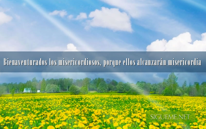 Paisaje campo con flores amarillas, nubes y rayos de sol