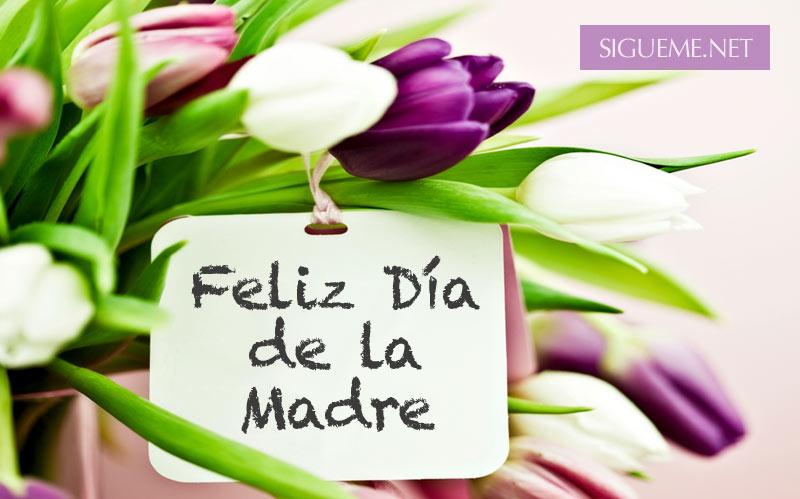 Wallpaper Dia De Las Madres Im 225 Genes D 237 A De La: Imagenes Feliz Dia De Las Madres Cristianas Feliz Dia De