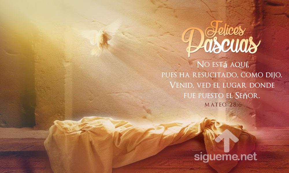 Felices Pascuas Jesus Ha Resucitado Imagenes De Semana Santa
