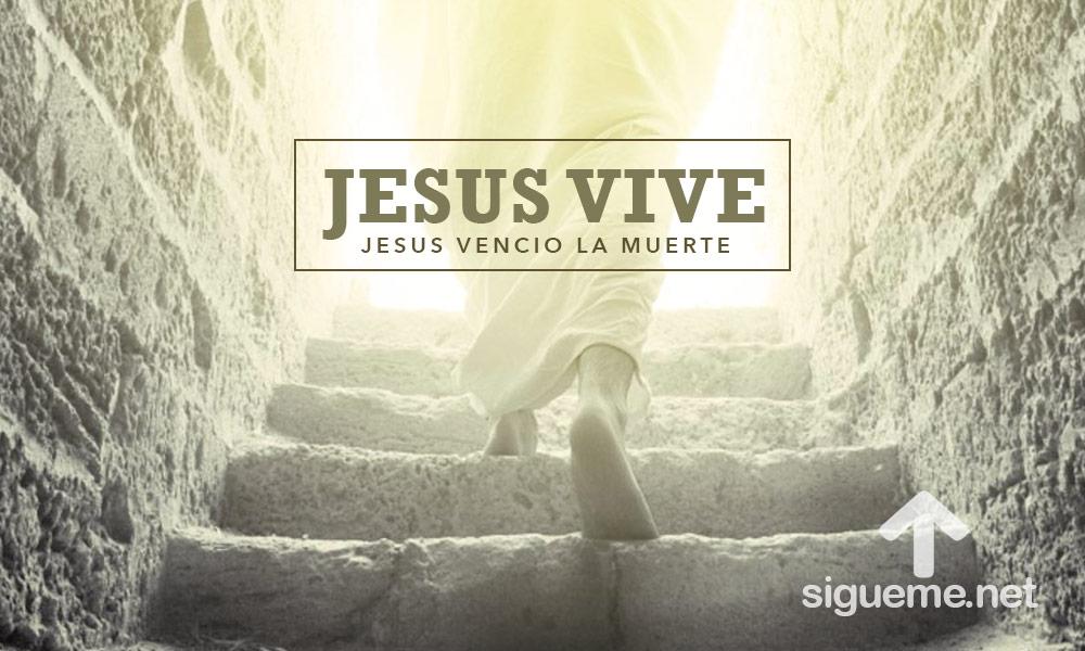 Felices Pascuas Jesucristo Vive Hoy Imagenes De Semana Santa