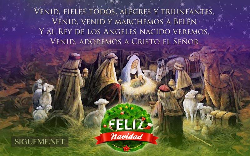 IMagen de Navidad con la frase Venid, adoremos a Cristo el Señor