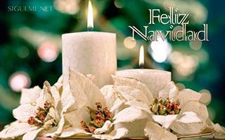 Arreglo Navideño con Flores y Velas