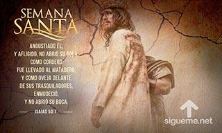 Jesus el Cordero de Dios que quita el pecado del mundo