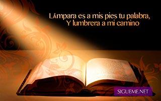 Biblia abierta con un rayo de luz que cae sobre ella