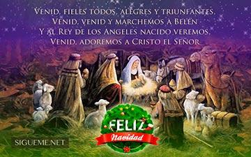 Pesebre con el niño Jesus, Maria, Jose y los Reyes Magos