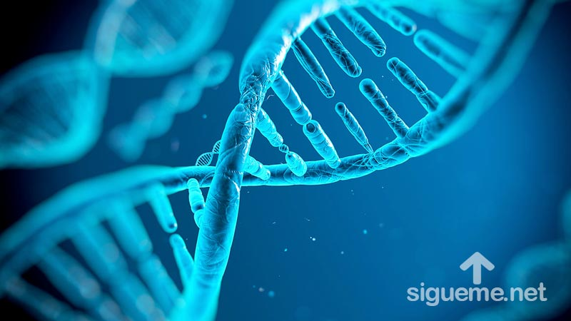 ADN espiritual, un mensaje del Pastor Cesar Castellanos