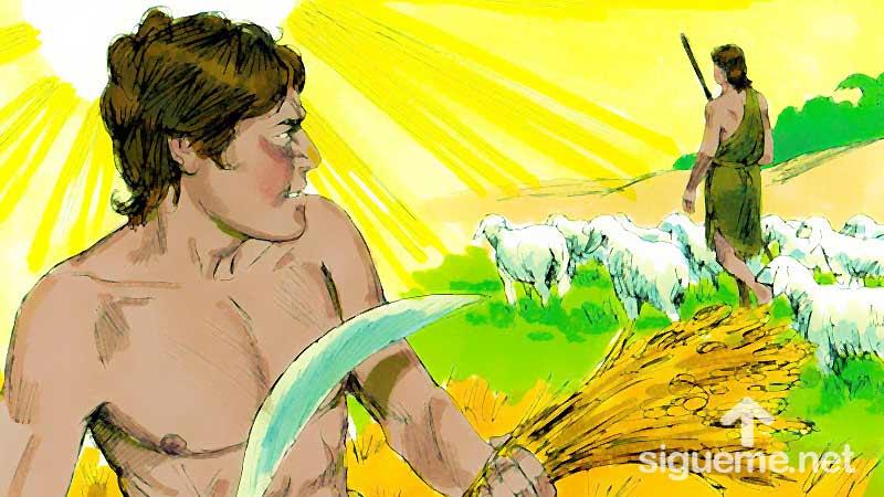 Ilustracion de la historia biblica Cain y Abel salen juntos al campo