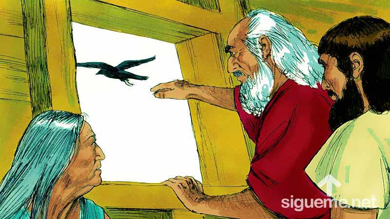 ilustración de: Noe ebvia una paloma desde el arca en busca de tierra firme