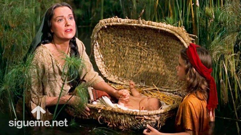 Historia Biblica: La Historia del Nacimiento de Moisés