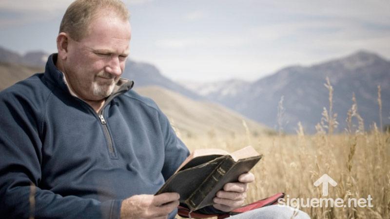 Hombre cristiano estudiando la Biblia al aire libre