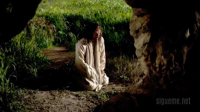imagen de Jesus orando a su Padre en Getsemani