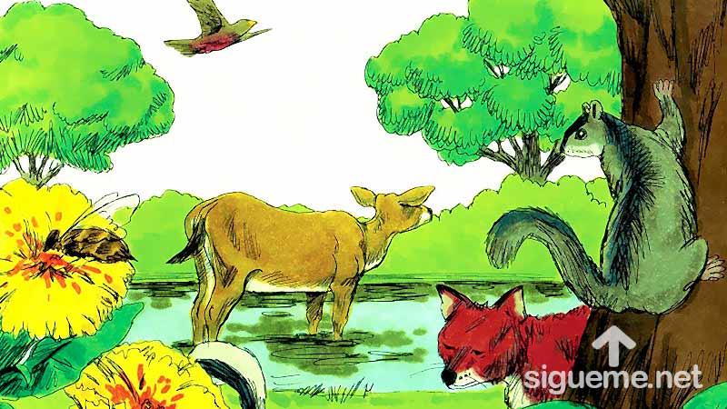 Ilustracion de la historia biblica  Dios crea los seres vivientes, los animales