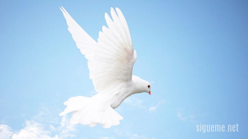La Presencia Del Espiritu Santo