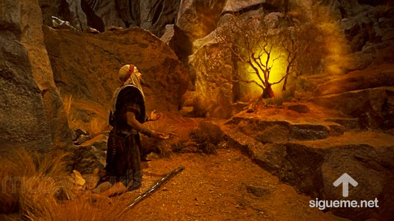 La zarza ardiente con la que Dios llamo a Moises