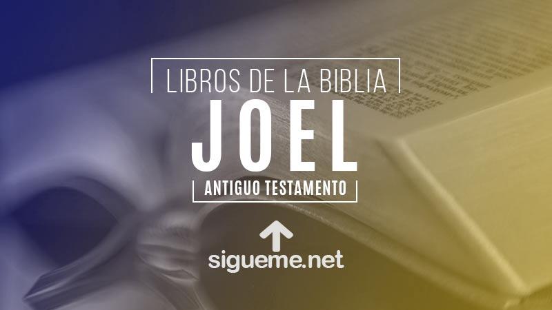 JOEL, personaje biblico del Antiguo testamento