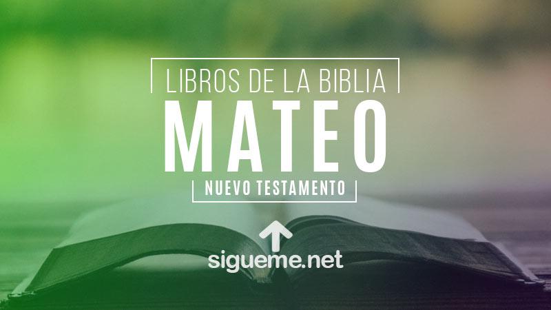 MATEO | Libro de la Biblia | Comentario Biblico