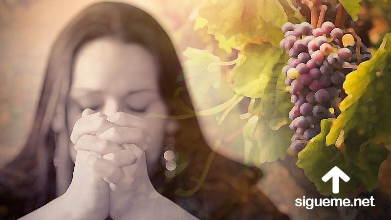 Mujer cristiana orando a Dios por firmeza espiritual y para llevar fruto para Dios