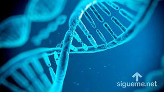 ADN Espiritual
