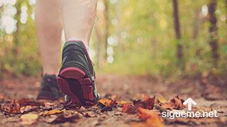 Caminar sin mirar atras, la Biblia