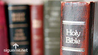 Diferentes versiones y tipos de Biblia