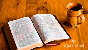 La Palabra de Dios nuestro alimento espiritual