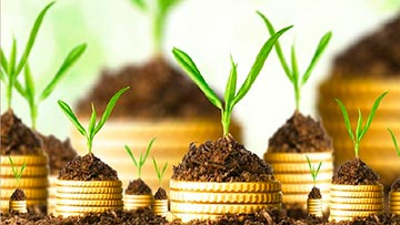 Sembrar semilla, Concepto financiero de inversion