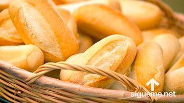 No sólo de pan vive el hombre sino de toda palabra que sale de la boca de Dios