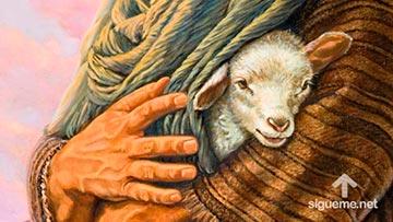 Pastor sostiene una oveja en sus manos