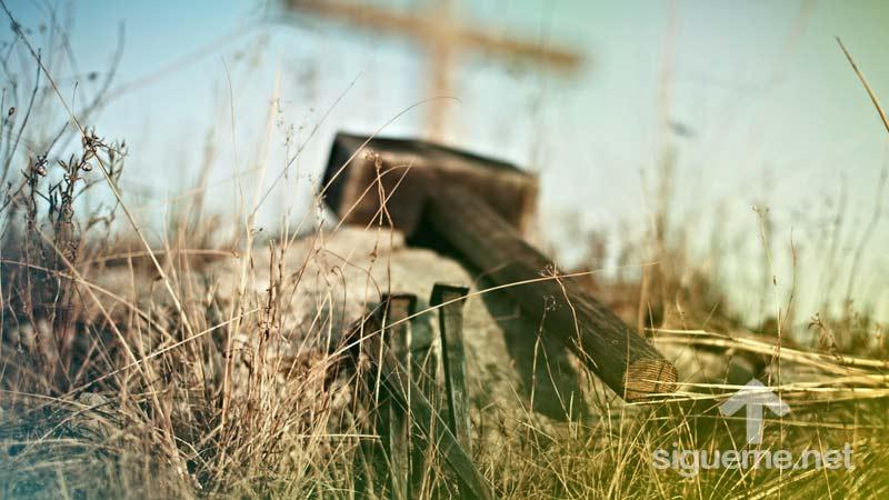 Viernes Santo y la Cruz de Jesus en Pascua